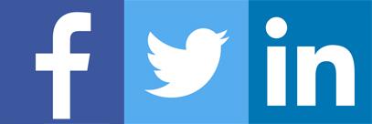 Facebook Twitter Linkedin Fabrice Lamirault