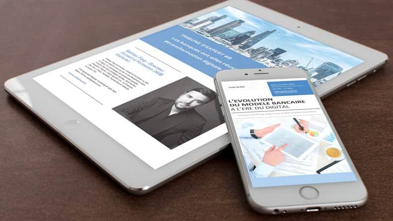 livre blanc banque digitale flaig lamirault