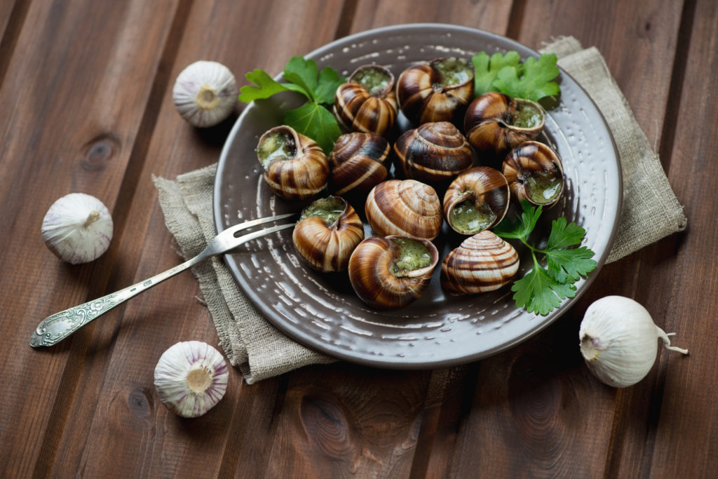 snail french food gastronomie france gastronomy